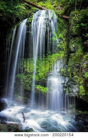 Waterfall - Amselfall - Saxony - Germany - Elbe Sandstone Mountains