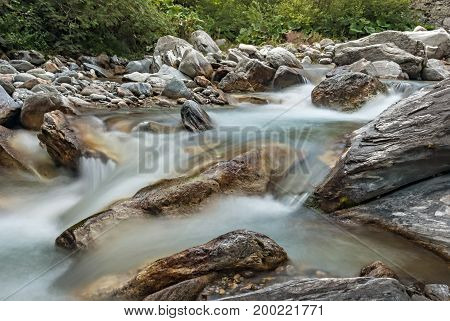 A forest river with clean cold water. Rapid flow of water in the wild