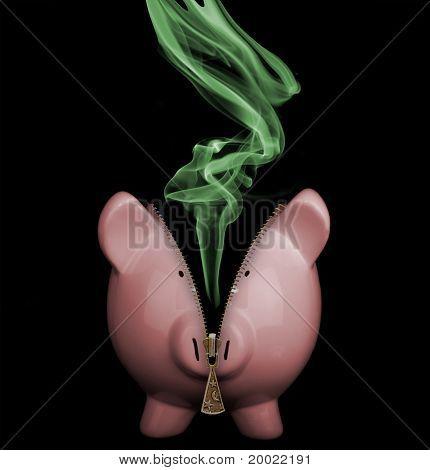 Unzipped Piggy