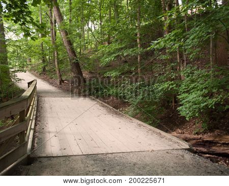 A wooden bridge on a dirt foot path in the woods