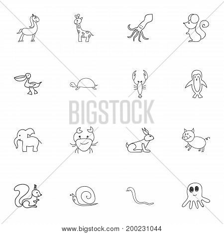 Set Of 16 Editable Animal Doodles. Includes Symbols Such As Slug, Lobster, Swine And More