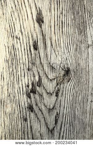 details on wood plank texture for your design