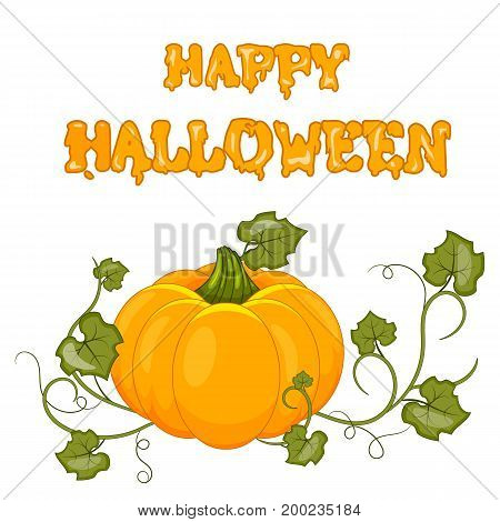 Happy Halloween. Stock vector. Cartoon pumpkin. Isolated white background