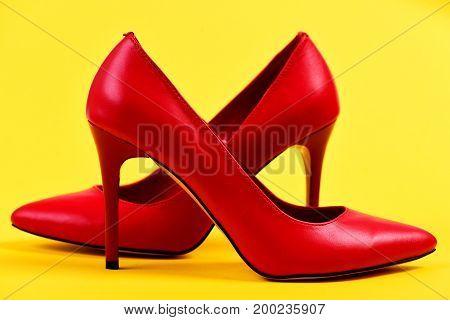 Female Accessories: Pair Of Elegant High Heel Shoes