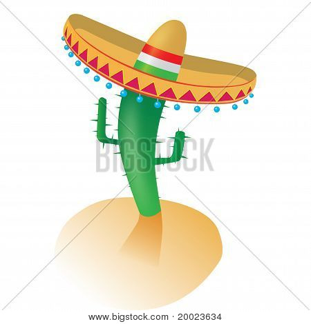Cactus with mexican hat sombrero