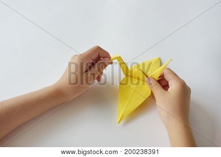 lesson of origami. Children's hands do origami from colored paper on white background
