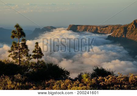 Sea of clouds at dawn over the Tirajana ravine, Gran canaria, Canary islands