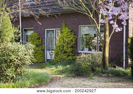 Front garden in Holland. Beatiful blooming house door.