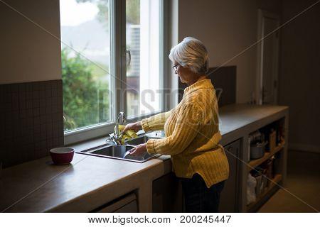 Senior woman washing dish in kitchen sink at home