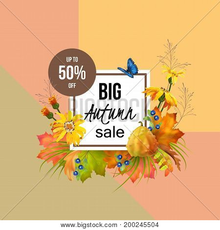Autumn Sale Design. Vector fall banner for web or print
