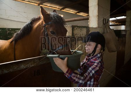 Adorable girl feeding the horse in the stable
