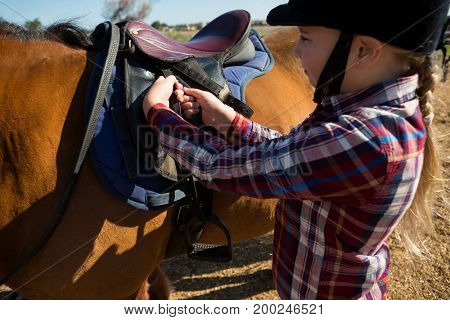 Close-up of girl adjusting saddle on horse in ranch
