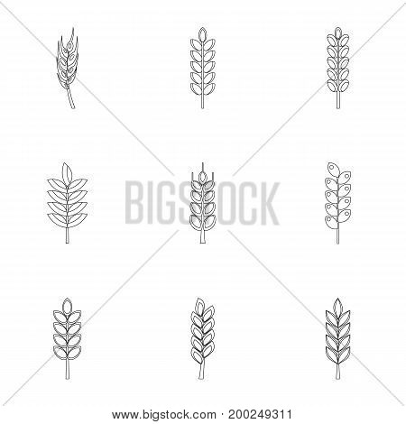 Wheat ears icon set. Outline style set of 9 wheat ears vector icons for web isolated on white background
