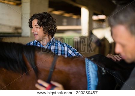 Close-up of man grooming the horse in the stable