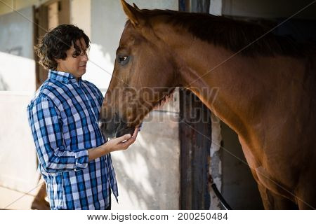 Smiling man caressing the brown horse in the stable