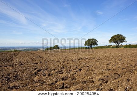 Plowed Hillside Field