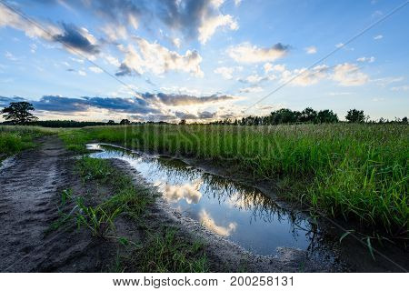 Countryside Fields In Summer With Dramatic Sunset
