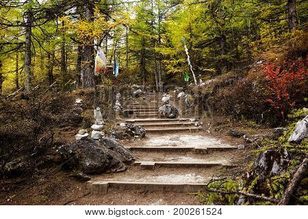 Shangri La, Stairs Going Through Forest Filled With Yellow Green Red Autumn Trees And Small Flags In