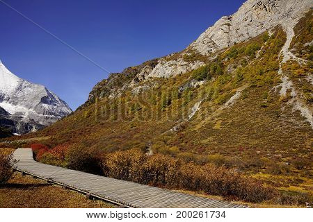 Shangri La, View Of Mountain Wall With Yellow Green Autumn Trees In Valley And Wooden Footpath In Ya