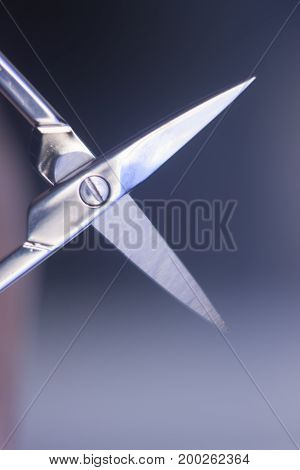 Manicurel Nail Scissors