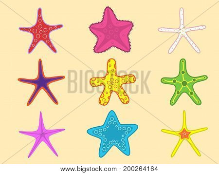 Starfish set with different colors. Summer elements. Marine design isolated on yellow background.