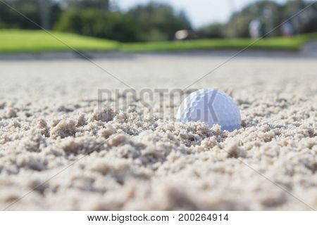 golf ball in the sand trap of a beautiful golf course
