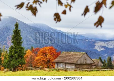 Colorful Autumn Landscape In The Mountain Village. Foggy Morning In The Carpathian Mountains.