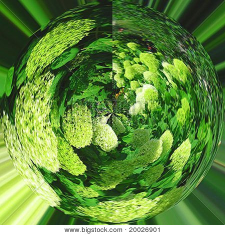 Abstract photo of green flowers simulating green planet