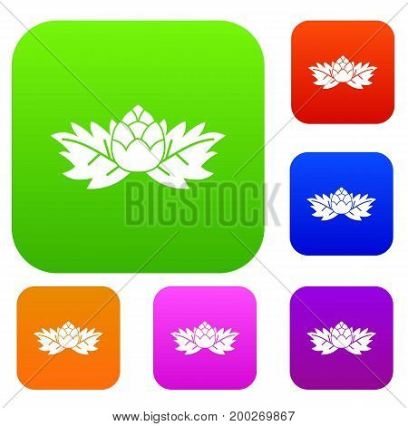 Hops set icon in different colors isolated vector illustration. Premium collection