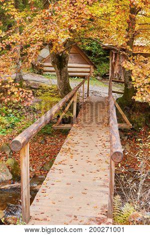 Wooden Bridge Over Brook In Autumn