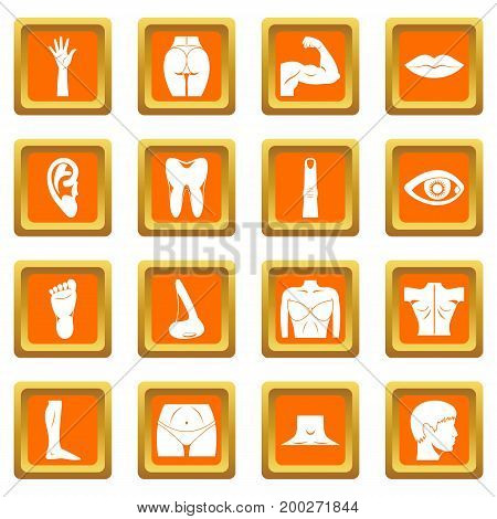 Body parts icons set in orange color isolated vector illustration for web and any design
