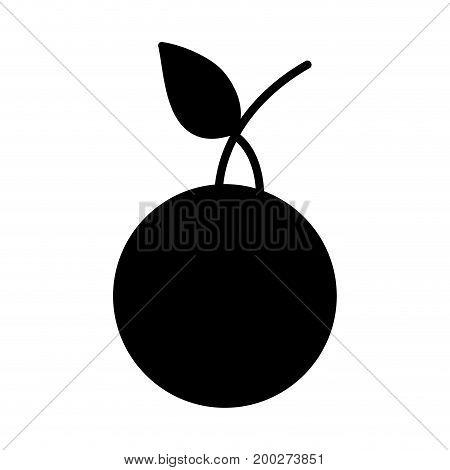 contour delicious orange fruit with protein nutrition vector illustration