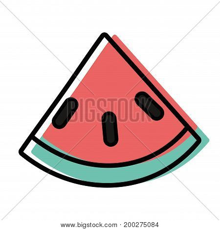 delicious watermelon fruit with protein nutrition vector illustration