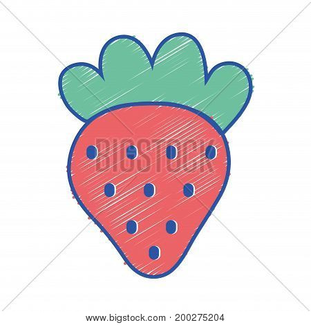 delicious strawberry fruit with protein nutrition vector illustration