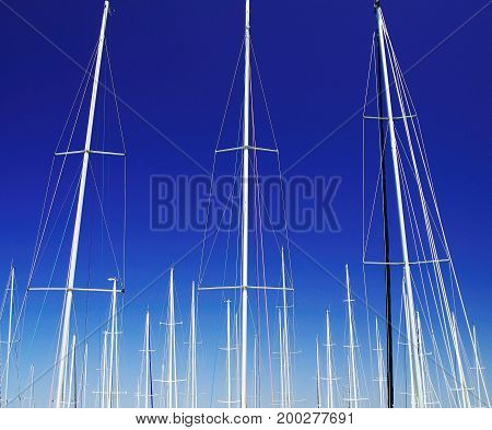 Artistic. Yacht Masts of boats berthed at a marina reaching into a Vivid Blue Sky. New South Wales Australia