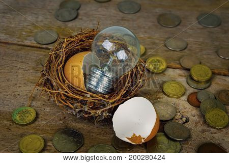 Scattered Coins With Light Bulb And Eggshel For Banking And Financial Concept