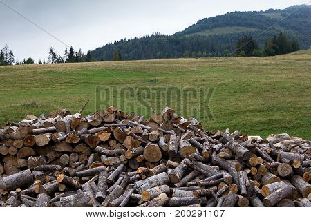 Firewood. Harvesting firewood for the winter. Preparation for winter in the mountains.