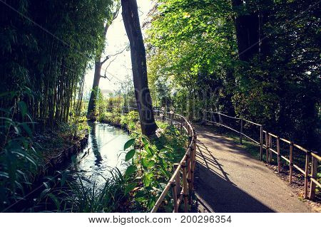 Claude Monet in autumn garden, the stream and the path with bamboo trees on a Sunny day, Giverny, France