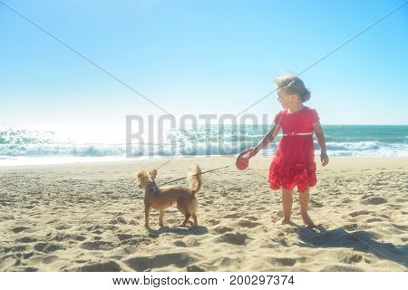 Little blond gir in red dress on the beach, running with Chihuahua dog, having fun in the sand, enjoying sunny day. front view