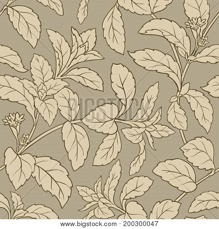stevia vector seamless pattern on color background