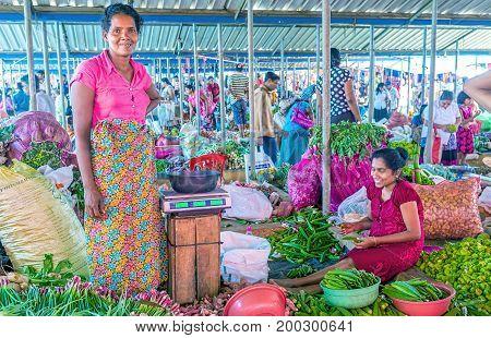 Exotic Vegetables In Wellawaya Market
