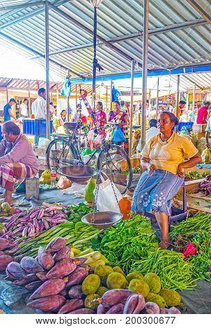 Diversity Of Vegetables In Wellawaya Market
