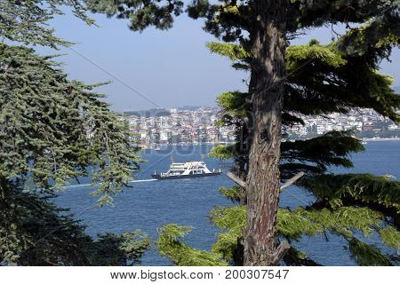 View and sight of Bosphorus at the day, Istanbul, Turkey