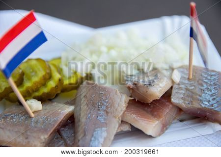 Broodje haring a traditional dutch snack seafood sandwich with herring onions and pickled cucumber.