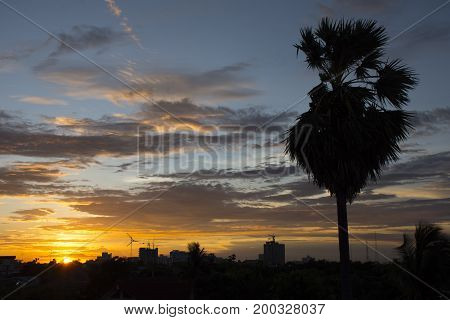 Silhouette abstract town and sugar plam with twilight sky Nature concept