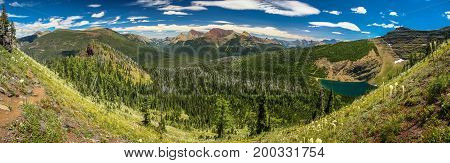 Panoramatic view of the fresh green glaciar Wall Lake valley, Waterton Lakes NP, Canada