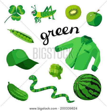 Green. Learn the color. Education set. Illustration of primary colors. Vector illustration