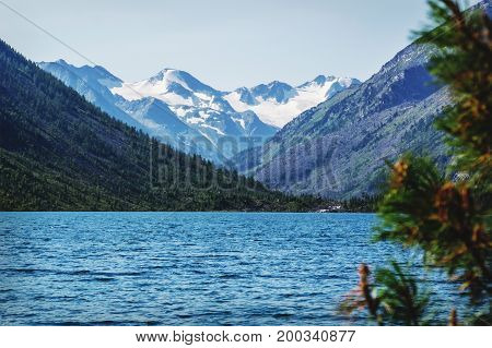Taiga Forest On The Edge Of The Lake On A Sunny Day