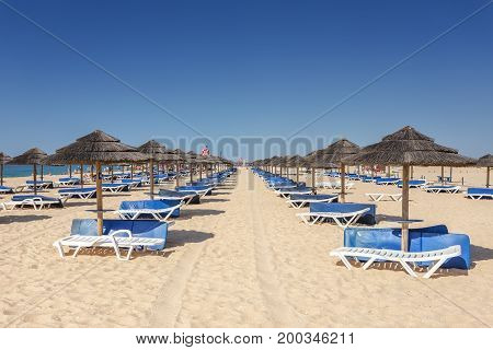 Rows of sun loungers and umbrellas for sunbathing to tourists. Tavira, Portugal, the Algarve.