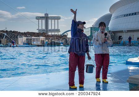 Dolphins Trainers In Port Of Nagoya Public Aquarium